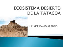 TATACOA DESERT ECOSYSTEM