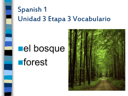 Spanish 1 Unidad 3 Etapa 3 Vocabulario
