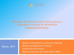 Proceso%20REDD+_presentacion_VFb[1]