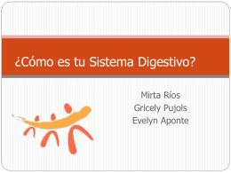 Como es Tu Sistema Digestivo