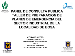 PANEL DE CONSULTA PUBLICA TALLER DE PREPARACION …