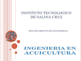 INSTITUTO TECNOLOGICO DE SALINA CRUZ