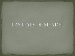 LAS LEYES DE MENDEL - acceso25biologia