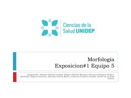 UNIVERSIDAD DEL DESARROLLO PROFESIONAL. TSU …