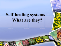 Self-healing systems – What are they?