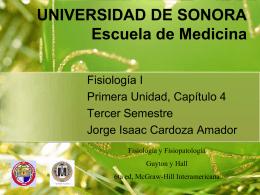 UNIVERSIDAD DE SONORA Licenciatura en Medicina