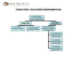 CONSULTORIA Y RELACIONES GUBERNAMENTALES