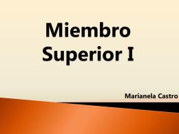 Miembro Superior - nutricion | Departamento de Ciencias