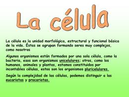 Diapositiva 1 - Trabajosciencias's Weblog
