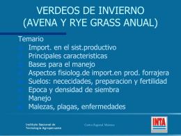 VERDEOS DE INVIERNO (AVENA Y RYE GRASS ANUAL)