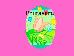 Primavera Spring