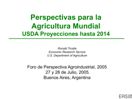 USDA 2001 Agricultural Baseline International Projection