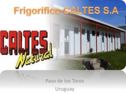 Frigorifico CALTES S.A