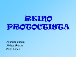 REINO PROTOCTISTA - IES Valle del Jiloca