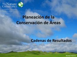 3.5.2.CADENAS DE RESULTADOSx