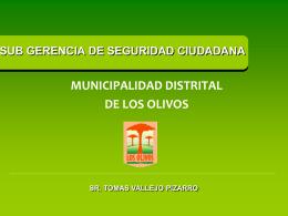 PROYECTO INTEGRAL MUNICPAL - Municipalidad Distrital …