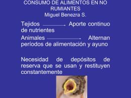 CONSUMO DE ALIMENTOS EN RUMIANTES Miguel …