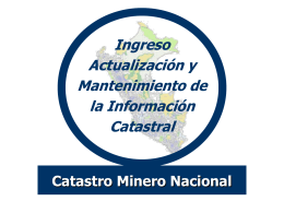 CONCESIONES Y CATASTRO MINERO NACIONAL