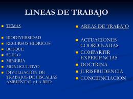 LINEAS DE TRABAJO