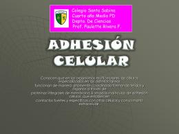 Diapositiva 1 - Colegio Santa Sabina