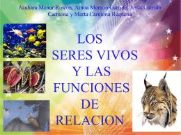 LOS SERES VIVOS Y LAS FUNCIONES DE RELACION