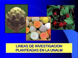 LINEAS DE INVESTIGACION PLANTEADAS EN LA UNALM
