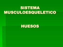 SISTEMA MUSCULOESQUELETICO HUESOS