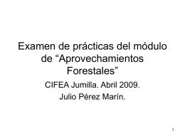 Examen aprovechamientos forestales