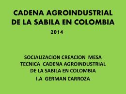 CADENA AGROINDUSTRIAL DE LA SABILA EN COLOMBIA …