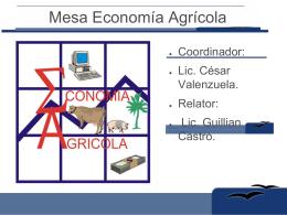 Mesa Economia Agricola