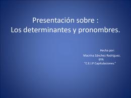 Los determinantes y los pronombres demostrativos.