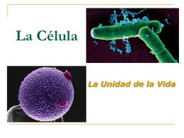 La Celula - fundamentosdebiolo2011