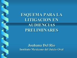 ESQUEMA DE AUDIENCIA DE FORMALIZACION