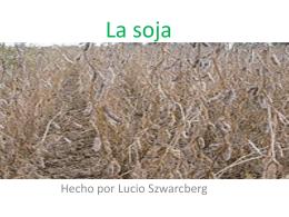 La soja