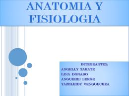 ANATOMIA Y FISIOLOGIA - Salud Ocupacional SENA 2013