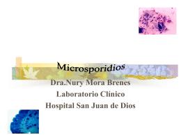 Microsporidios