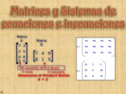 Matrices y Sistemas de ecuaciones e inecuaciones
