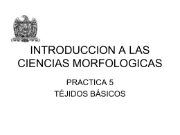 INTRODUCCION A LAS CIENCIAS MORFOLOGICAS
