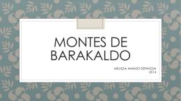 MONTES DE BARAKALDO.