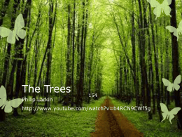 The Trees - Wikispaces