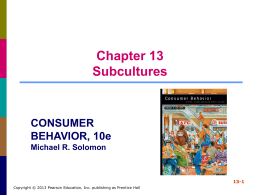 Chapter 13 Subcultures
