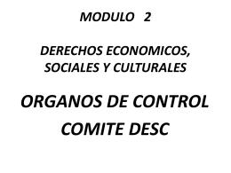 COMITE DESC - INFORMES SOMBRA - CEDAW