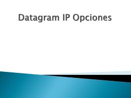 Datagram IP Opciones
