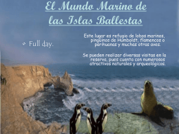 El Mundo Marino de las Islas Ballestas