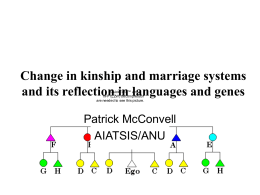 Change in kinship and marriage systems and its reflection