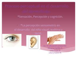 Proceso perceptual en el desarrollo del aprendizaje.