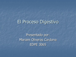 El Proceso Digestivo