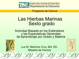 Botany Presentation - Universidad de Puerto Rico Humacao