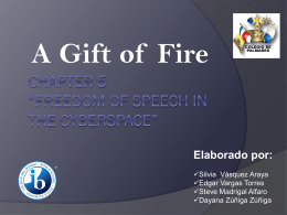 "Chapter 5 ""Freedom of speech in the cyberspace"""