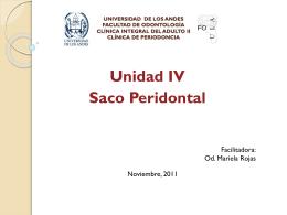 UNIVERSIDAD DE LOS ANDES FACULTAD DE …